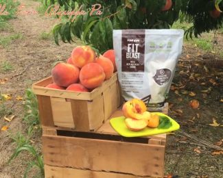 Peach FIT Blast Protein Shakes