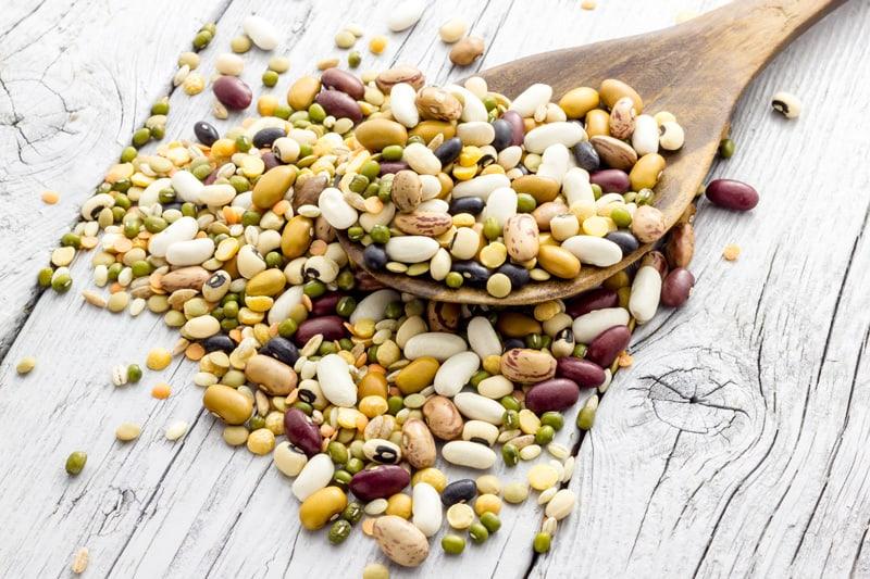 Tara Health Foods Limited