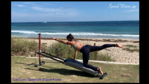 Pilates Mobility Exercise on Your Total Gym