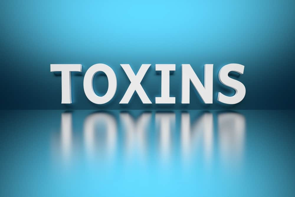 How to Avoid Environmental Toxins
