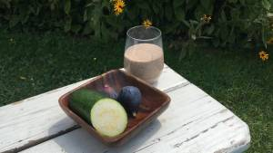 Change up your Total Gym FIT BLAST Protein Shake with Zucchini and Figs!