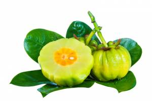 The Health Benefits of Garcinia Cambogia