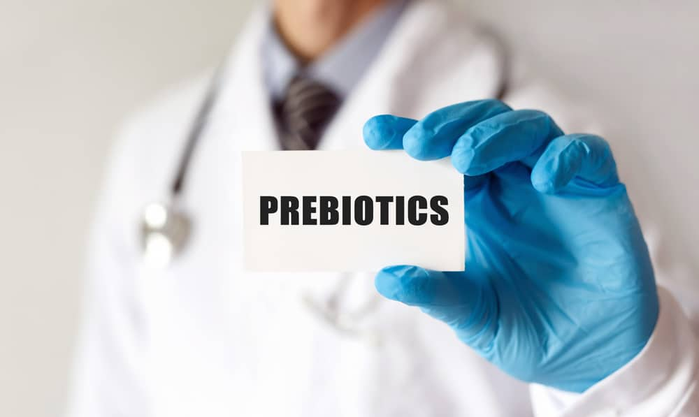 Heard of Probiotics, but what are Prebiotics