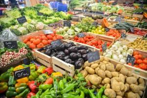GMOs Deciphered
